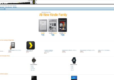 Amazon 2011