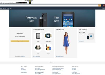 Amazon 2016